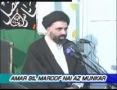 [10] Amr Bil Maroof Wa Nahi Anil Munkar - Mohurrum 2007 - Ustad Syed Jawad Naqavi - Urdu