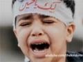 [CLIP] Trials of Imam Husayn (a.s)  - Agha Ali Reza Panahian - Farsi sub English