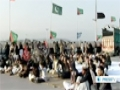 [20 Feb 2013] Pakistan to launch operation to help bring end to Shias killing - English