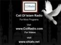 23 Islamic Economy by Hujjatul islam Mohammed Khalfan - Call of Islam Radio - English