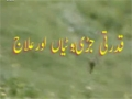 [24 Mar 2013] Natural weeds and Cure - قدرتی جڑی بوٹیاں اورعلاج - Urdu