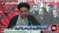 [Majlis Barae Bulandi e Darjat Shaheed Ustad Sibte Jaffer] Speech - H.I Haider Abbas Abidi - 30 March 2013 - Urdu