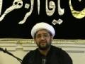 [Majlis 2] Shahadat Bibi Fatima (a.s) and Tazkia Nafs - 2013 - Maulana Baig - English