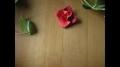 Origami  Diamondrose Squarejumper  Spinner - All Languages