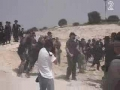 Zionist acts of violence and brutality against Jewish protesters - Hebrew