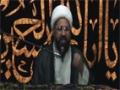 [01] Safar 1435 - Azadar Ki Zarorat wa Ehmiyat Aur Hifazat - H.I Amin Shaheedi - Urdu