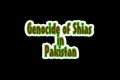 Genocide of Shias in Pakistan - Urdu and All Languages