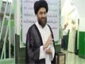 [Spiritual Journey to Iraq] Wadi us Salam (Part 02) - H.I Ali Raza Rizvi - June 2014 - Urdu & English