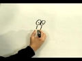 How to draw  cartoon Lion English