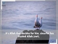 Hayatun Tayyiba: Making a New Life For Yourself Through Quranic Principles | Sh. Bahmanpour - English