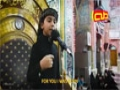 Habibi Ya Hussain [as] by Ammar al-Halwachi in Holy Shrine of Imam Hussain [as] - Arabic Sub English
