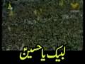 Labbayk Ya Hussain - Urdu