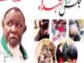 شہداء نائجیریا نے امام زمانہ کو کیسے خوش کیا ؟ - Aga Jawad Naqvi - Urdu